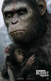 el planeta de los simios confrontacion poster