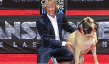 Michael Bay inmortalizó sus huellas en el Teatro Chino de Hollywood